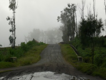 foggy village road_resize